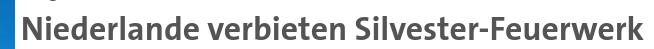 Silvester niederlande bildschirmfoto 2020 11 13 16 33 46