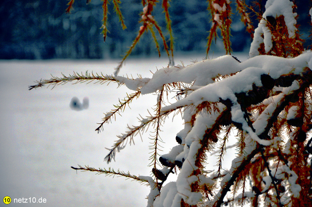 Marienberg nuernberg schnee dezember 202014 4