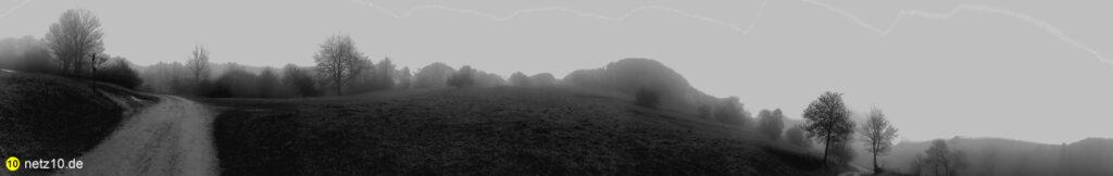 Wald panorama 125652 9