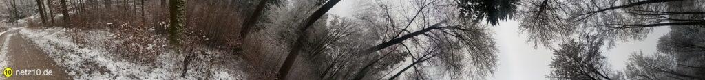 Wald panorama schnee 437 12
