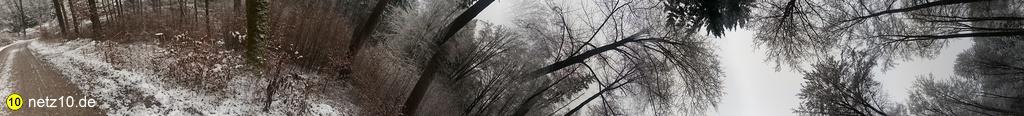 Wald panorama schnee 437 3