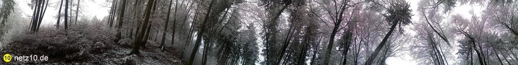 Wald panorama schnee 728 5